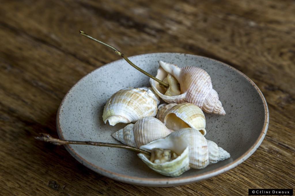 Restaurant-In-De-Wulf-Kobe-Desramault-Silencio-bulot